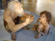 NHM - Neandertaler Modell 1