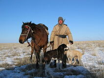 440px-Kazakh shepard with dogs and horse