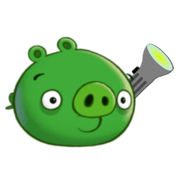 Flashlight Pig