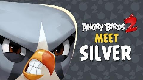 Angry Birds 2 – Meet Silver Looping legend!