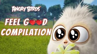 Angry Birds Feel Good Compilation 1