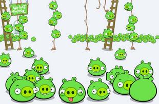 Свині Багато Свиней 01