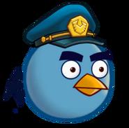 Птица-полицейский45-1