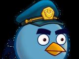 Птица-полицейский