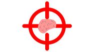 Метка мозгов