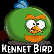 Kennet Bird-0
