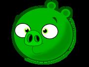 Свин-миньон новый (1)