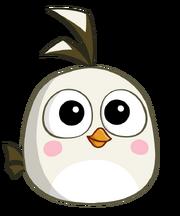 AB2의 아기새