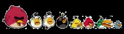Pájaros cadáveres