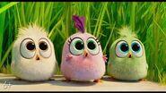 Angry Birds 2 в кино - с 15 августа-6