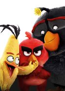 Angry Birds Textless Poster