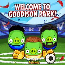 Cerdos de Everton-2