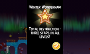 Winter Wonderham Total Destruction