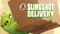 Slingshot Delivery TC