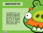 180px-Moustache Pig Toy Care
