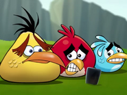 Angry Birds Bing Video Ep.4-6