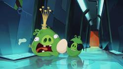 Яйцо-17