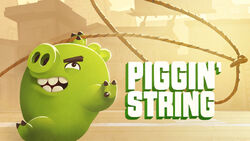 Piggin' String TC