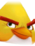 Angry Birds Evolution Classic Chuck Portrait