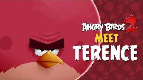 Angry Birds 2 – Meet Terence Big, Bad, Bold!