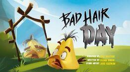 BadHairDay