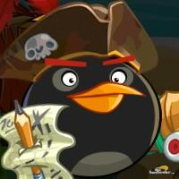 Angry Pirate Wiki