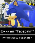 Ежиное