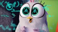 Angry Birds Movie 2 - STEM