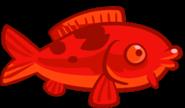 185px-Red koi fish