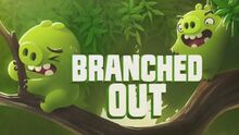 BranchedOut