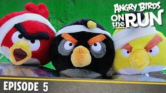 Angry Birds on The Run The Flock Get Reflective - S1 Ep5