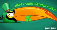 Hal in St. Piggy's Day