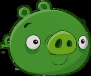 Свин-Миньон