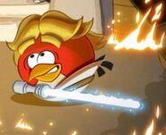AngryBirds Luke (3)