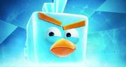News-abspace-icebird