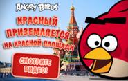 Рэд на Красной площади