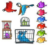 PájarosEnjaulados