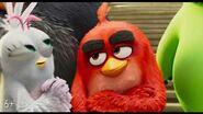 Angry Birds 2 в кино - с 15 августа-10