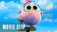 The Angry Birds Movie 2 - Hatchling Eggs - At Cinemas Now