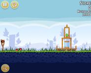 AngryBirds Danbird Gameplay