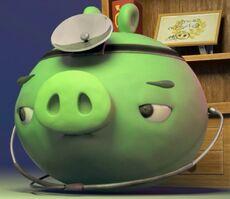 Свин-Доктор-1