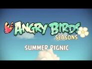Angry Birds Seasons - Summer Pignic