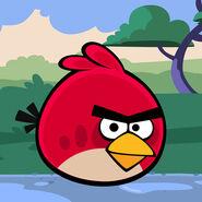 Angry-birds-school-icon