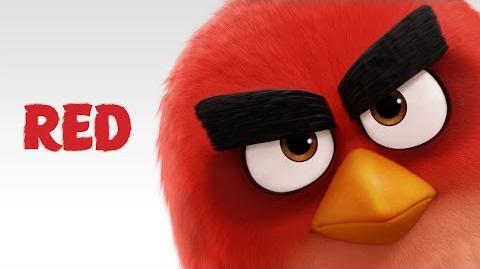 CONOCE A RED - Angry Birds La Peli