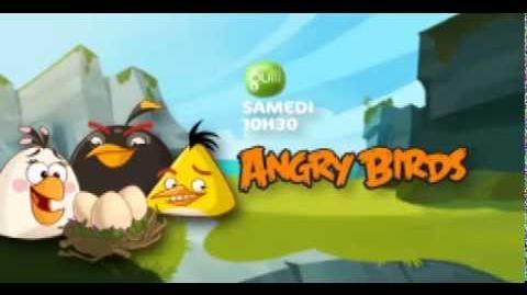 Les Angry Birds débarquent sur Gulli