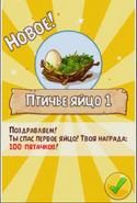 1-е птичье яйцо получено