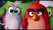 THE ANGRY BIRDS MOVIE 2 x UNITED NATIONS - ACT NOW