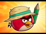 Angry Birds Fight!/Equipment