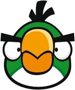 Boomerang Bird Front