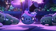 Свин шаман 02